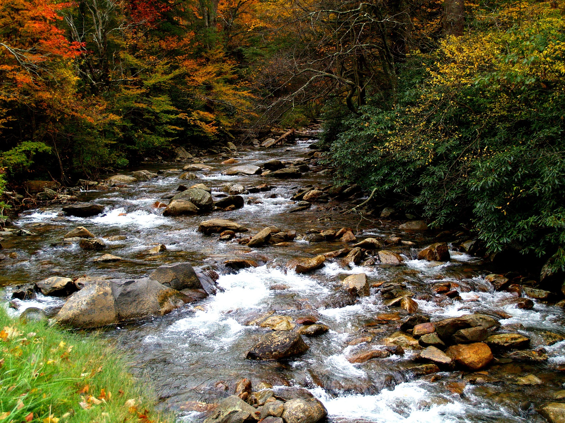 Great Smoky National Park in Fall